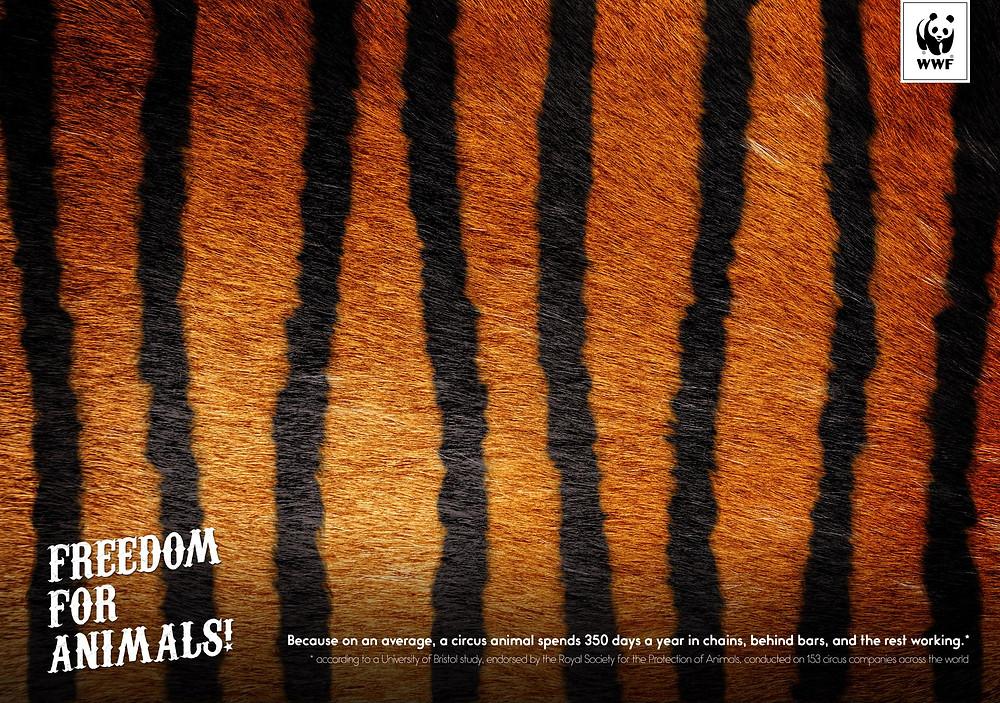 WWF: Tiger