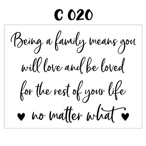 C 020