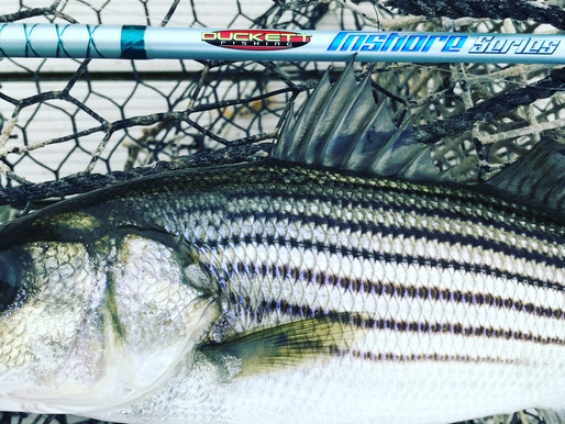 Fishing Gear, What Kind and Why?