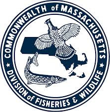 2020 MA Saltwater Fishing Regulations