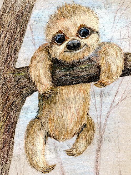 Climbing Above Sloth Print