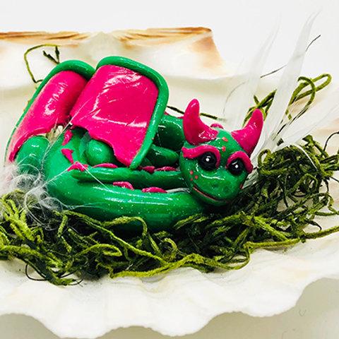 Watermelon Shell Dragon