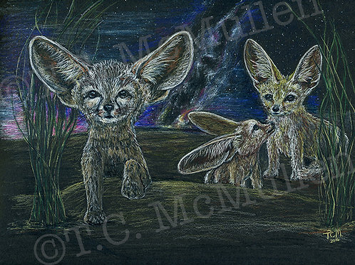 Milkyway Fennec Foxes Print