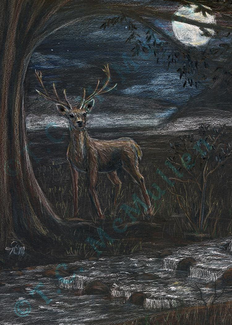 Waterfall Deer