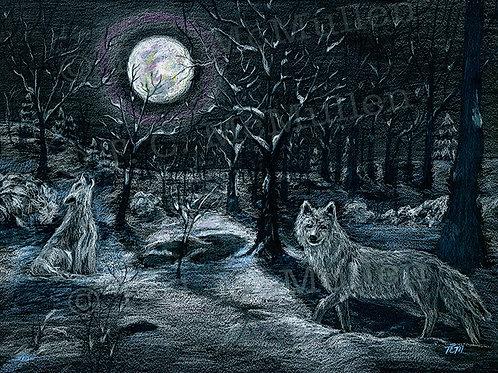 Moonlight Wolves Print