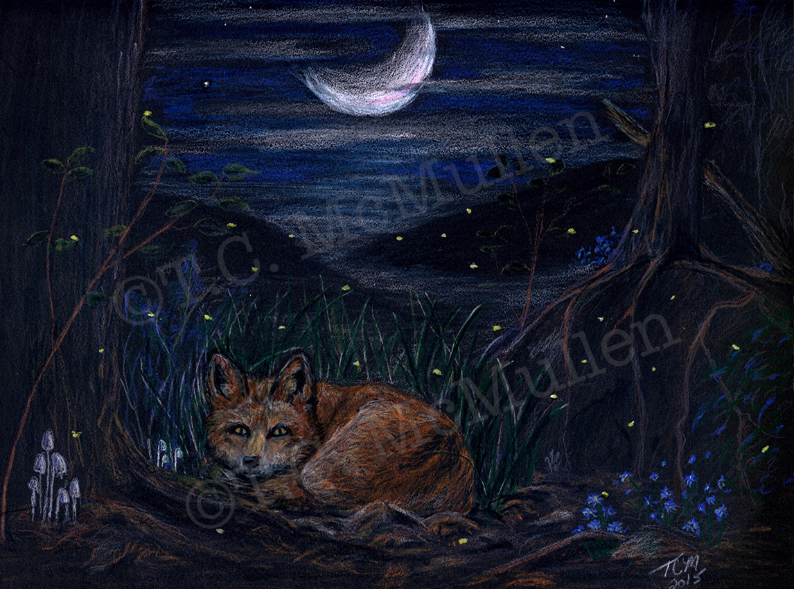 Firefly Fox