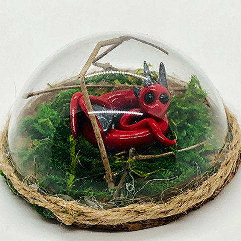 Red or Magenta Small Terrarium