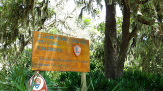 Off the Beaten Path: Cumberland Island