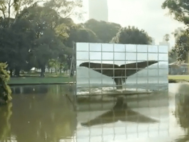 Samsung Europe Tvs | Planet First