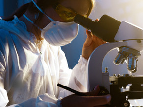 World's first non-animal toxicology testing strategy developed