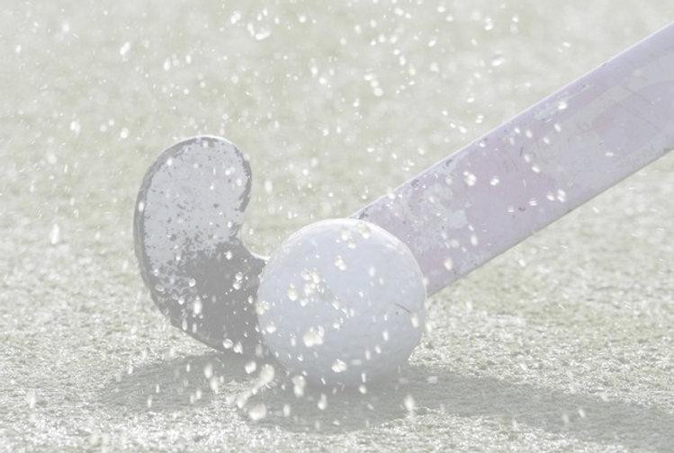ANP-hockeystick_edited.jpg