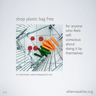 Zero Waste Grocery Shopping?