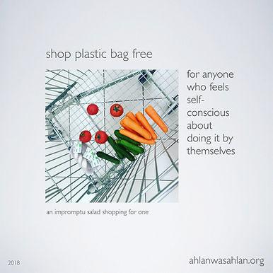 Zero Waste Grocery Shopping?