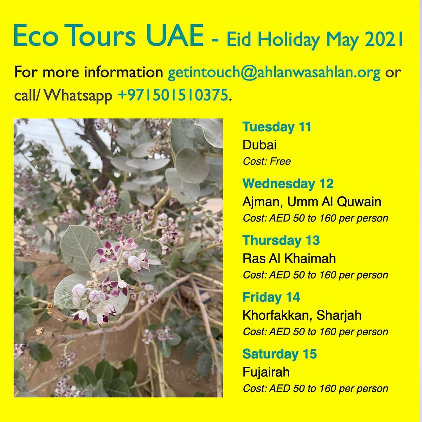 Eco Tour - Dubai