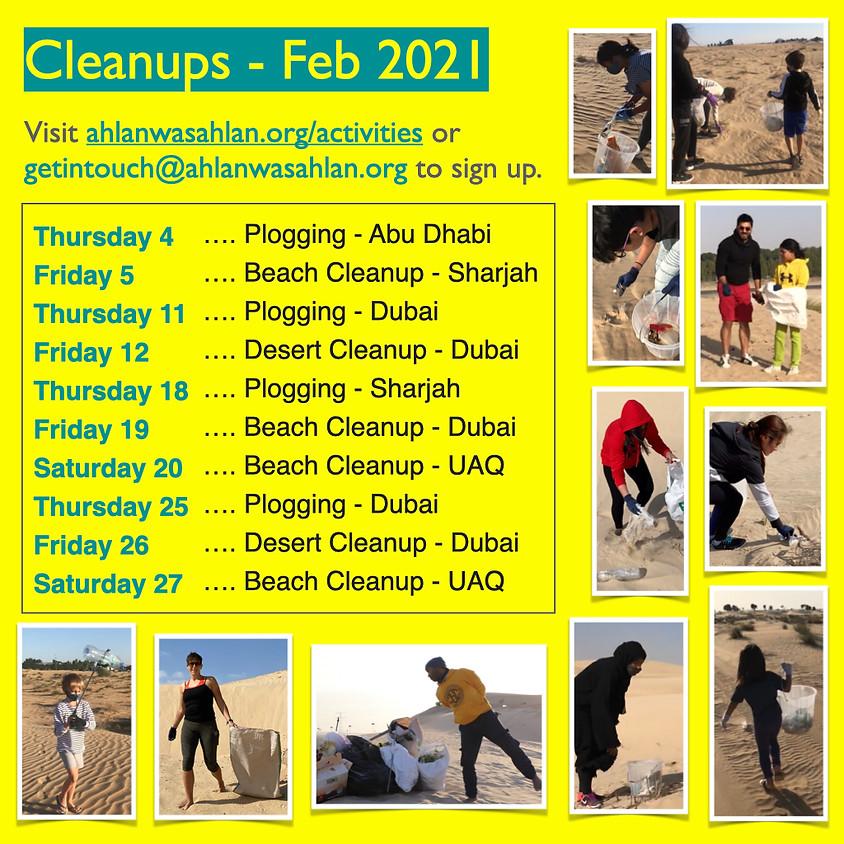 Desert Cleanup - Dubai