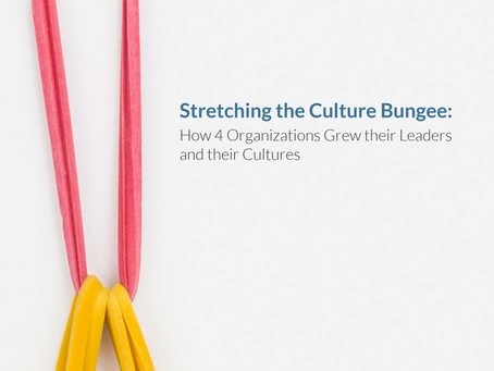 New Whitepaper - Stretching the Culture Bungee