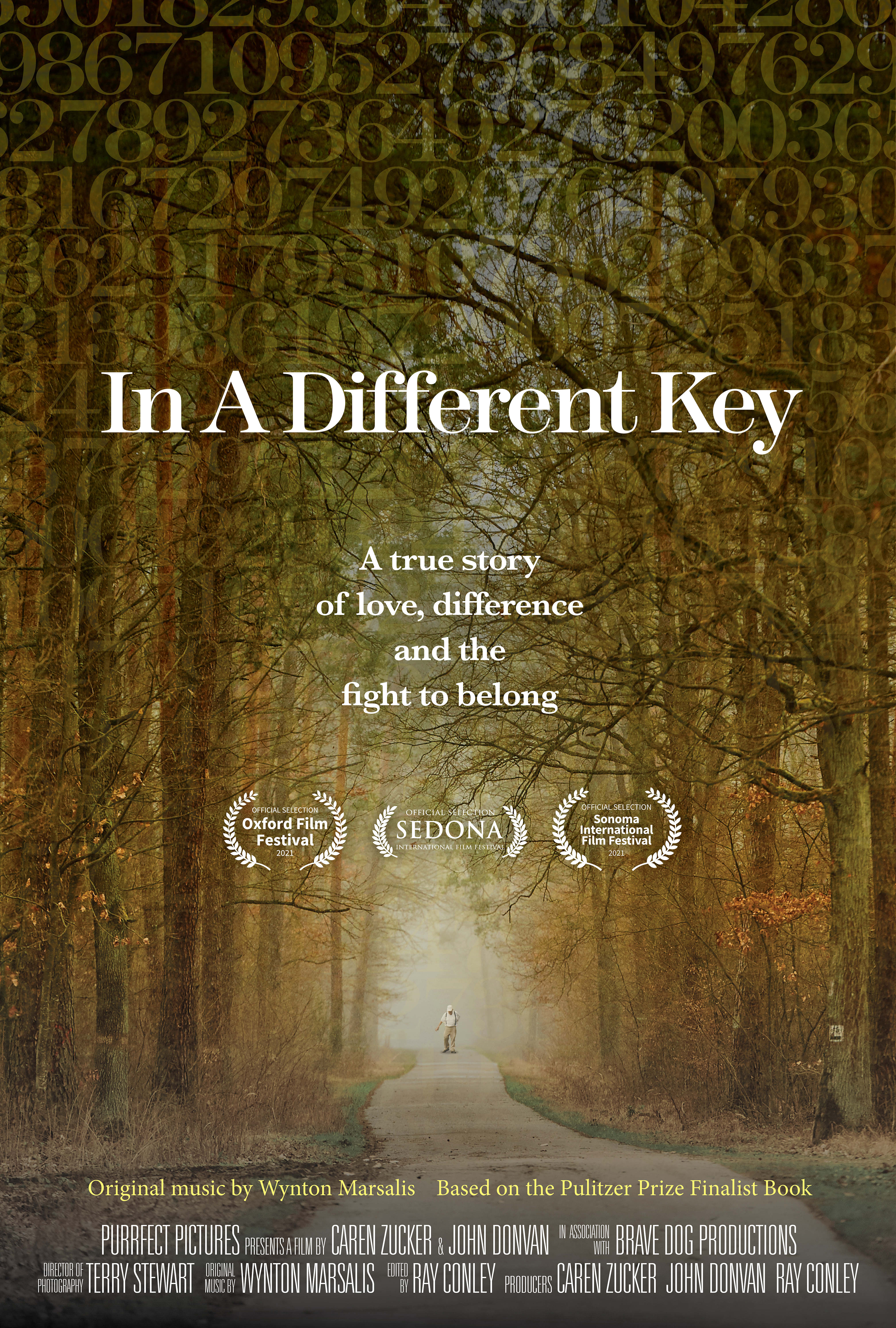 IN A DIFFERENT KEY POSTER