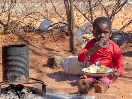 United Nations SDG | #2 No more hunger