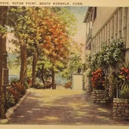 Interior grove Roton Point.jpg