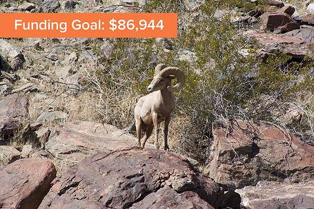 Governance-Funding-Goal.jpg