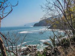 Jungle Coastline