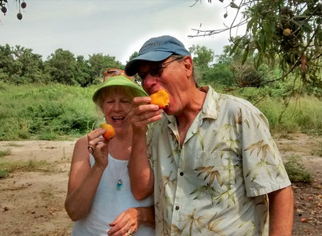 It's Mango Season in Mexico!