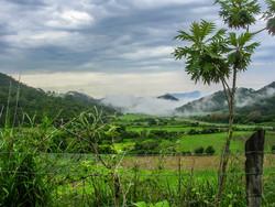 Valley Fog B