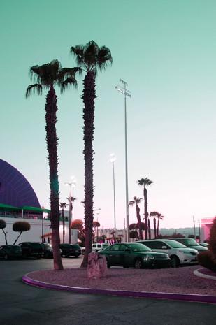 California dream 8