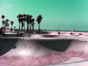 California dream 25