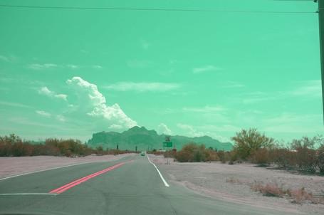 California dream 11