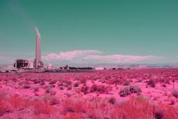 California dream 29