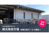 送料0円の市場引取サービスに横浜南部市場が新たに仲間入り!