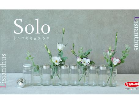 2016年にサカタのタネが発表した 世界初の無花粉トルコギキョウ 「ソロ」