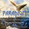 Paradigm Immersive Theatrical Show