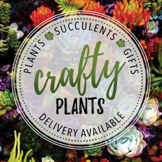 Crafty Plants