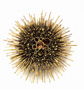 Urchin Sconce