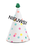 Party Hat_edited.png
