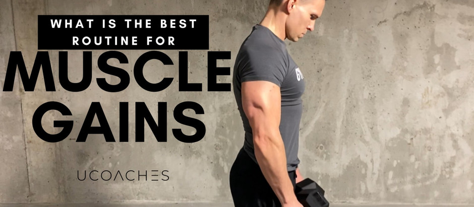 What is the Best Routine for Muscle Gains?