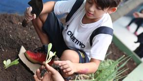 Horticultura para o 2º Ano Fundamental.