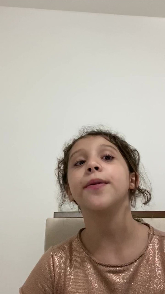 Lavinia Sales - 4º Ano