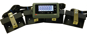 NTEP Indicator