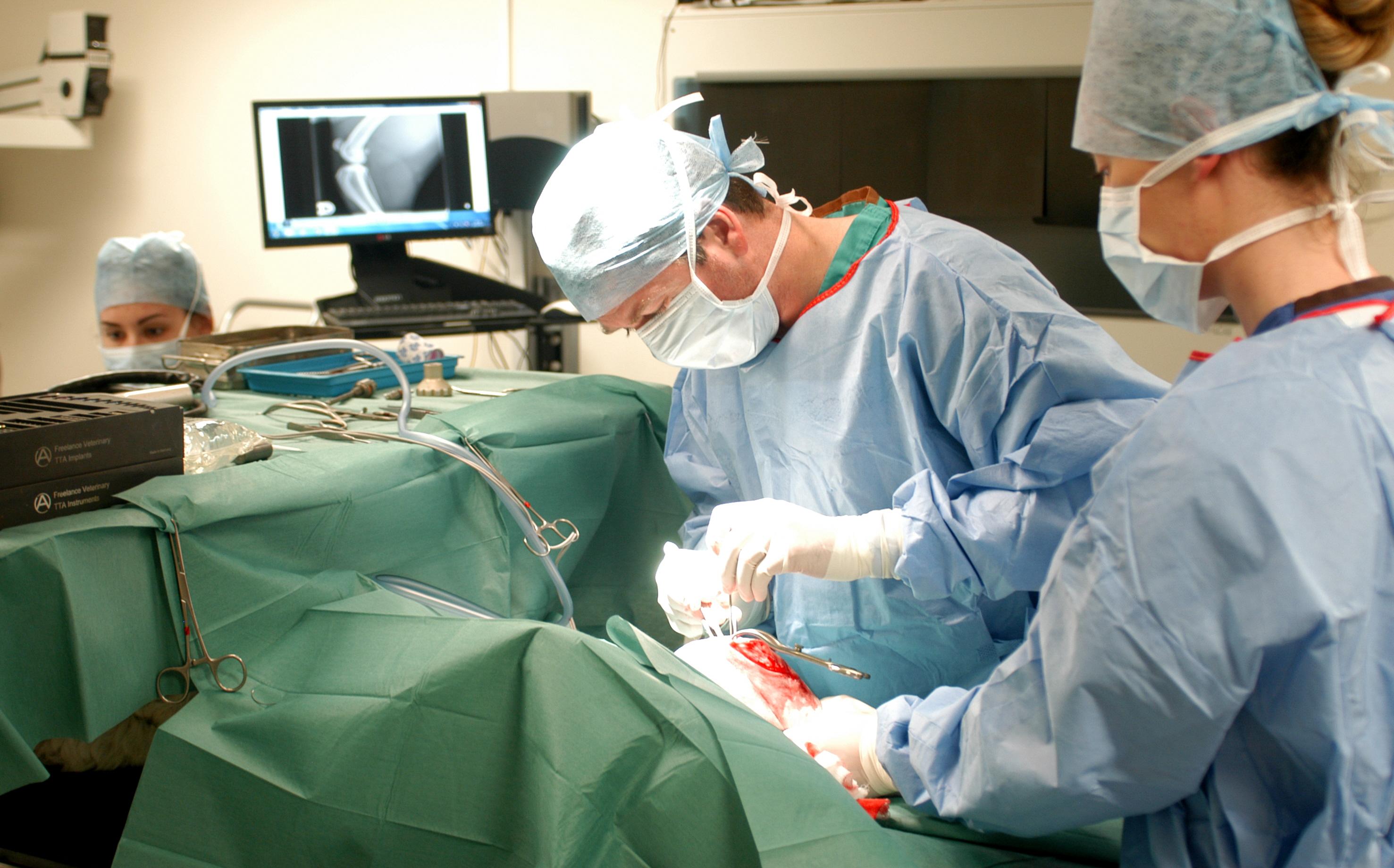 cruciate ligament TTA surgery in dog