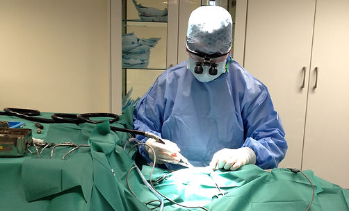 vet orthopaedic spinal surgery in Northern Ireland