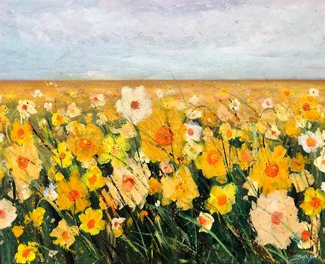 Daffodil- Signed Print