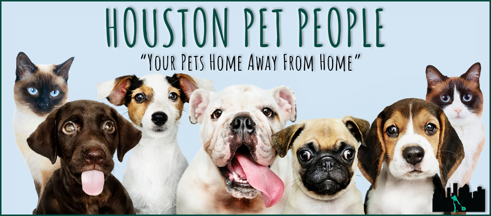 HOUSTON PET PEOPLE  BANNER.png