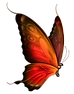 Red_and_Brown_Transparent_Butterfly_Clip