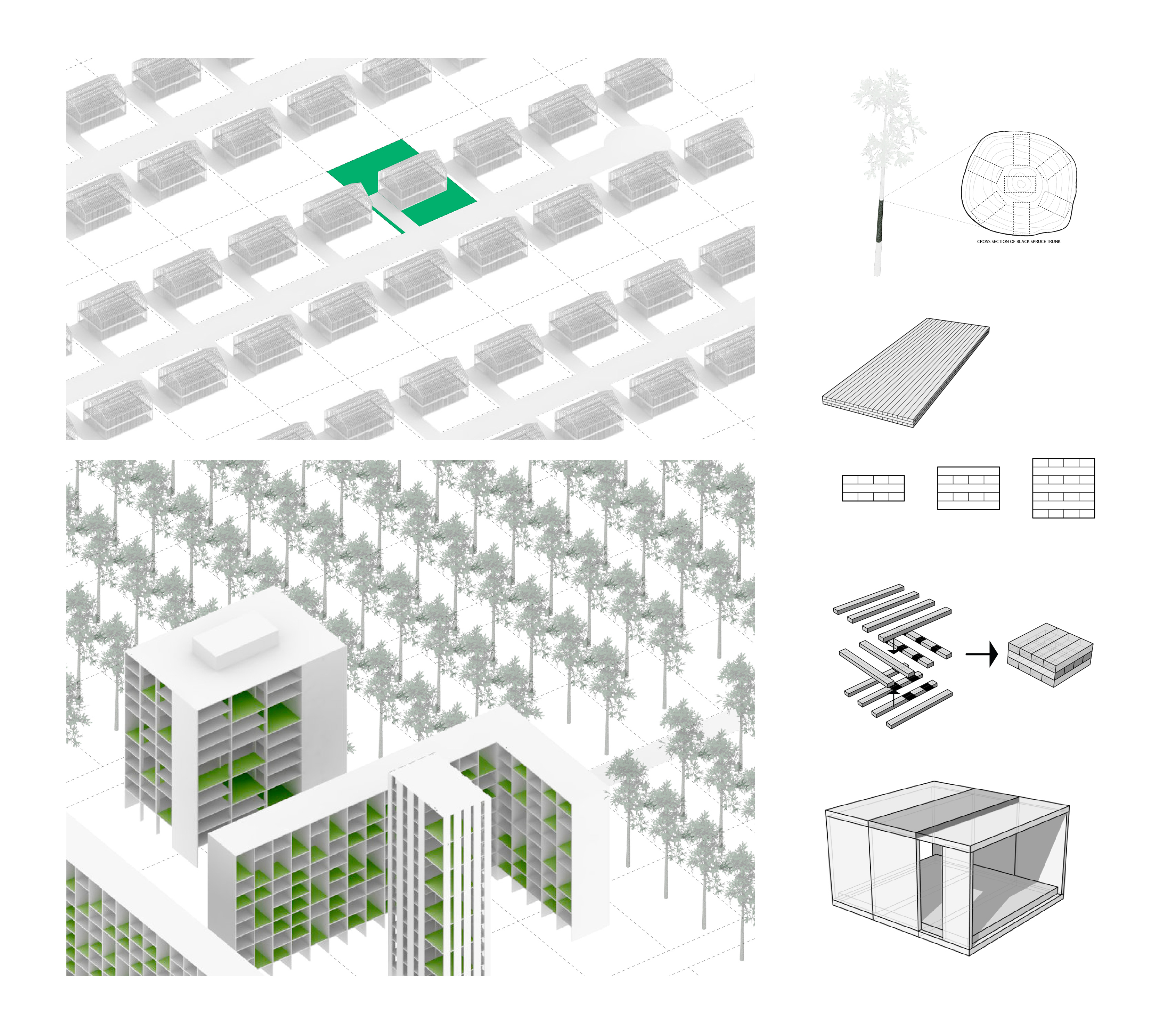layouts for website11.jpg