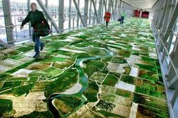 Sacramento River Carpet