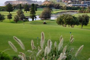 Mona Vale Golf Club views