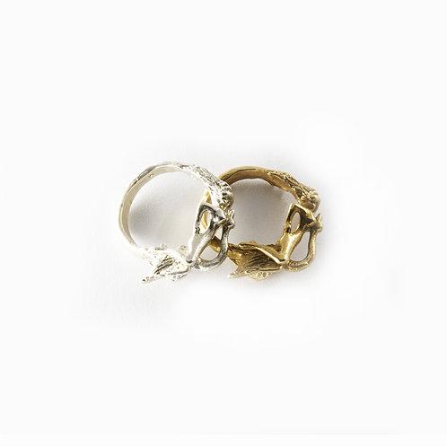 Ambiguous ring